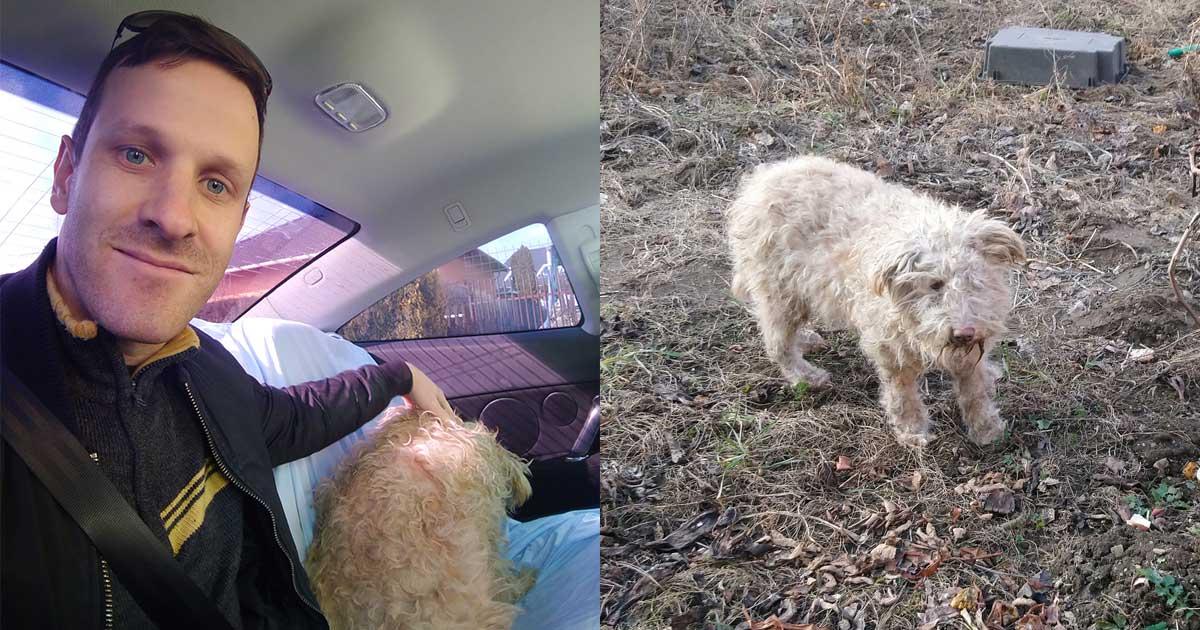Bundi, az első örökbefogadott kutyám | True story