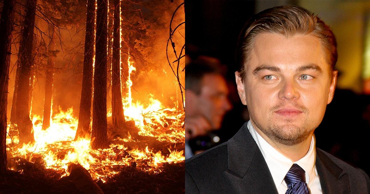 Leonardo DiCaprio 5 millió dollár és Amazonas 1