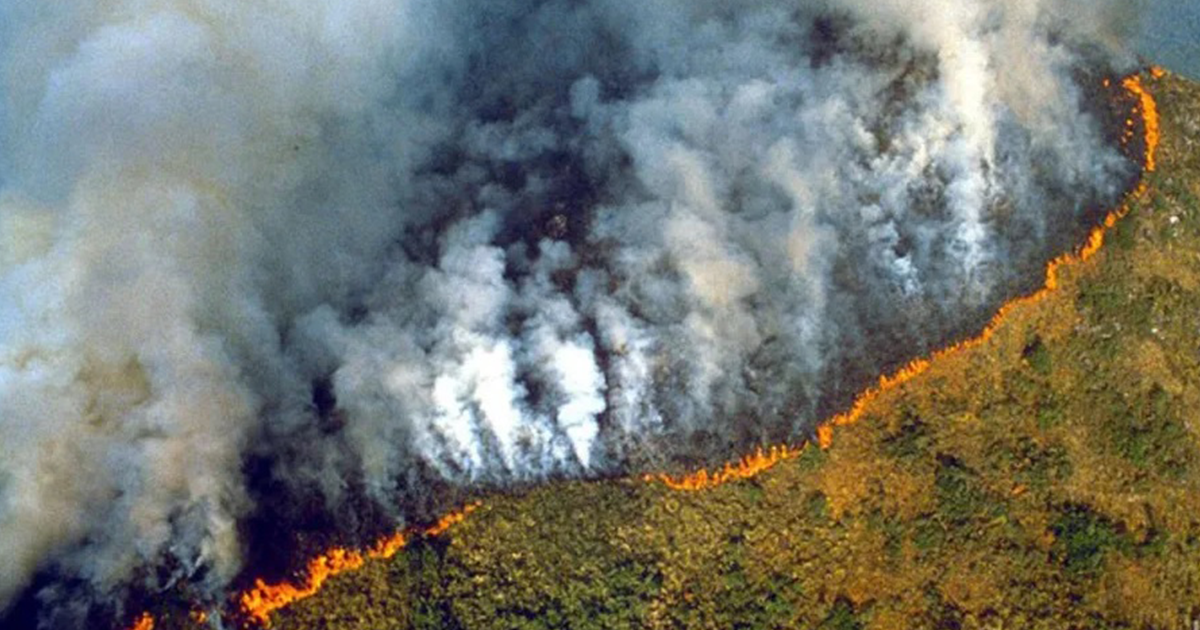 Az Amazonas őserdőjét évről évre egyre több tűzvész pusztítja.