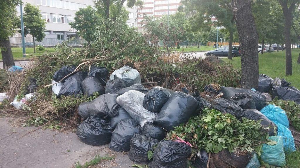 Egy korábbi illegális zöldhulladéklerakás Budapesten. / Fotó: hulladekvadasz.hu