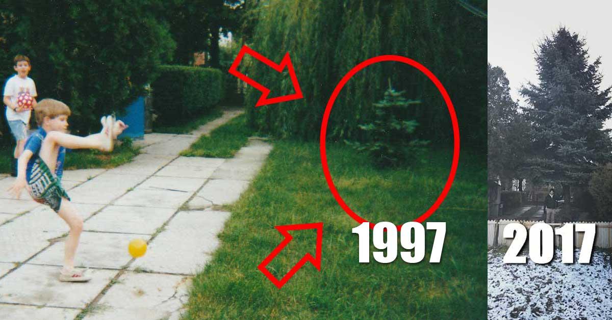 A kép bal oldalán öcsémékkel labdázunk 1997-ben. Viszont a fát 1996 karácsonya után ültettük ki, ami ma már igazán tekintélyes méreteket öltött.