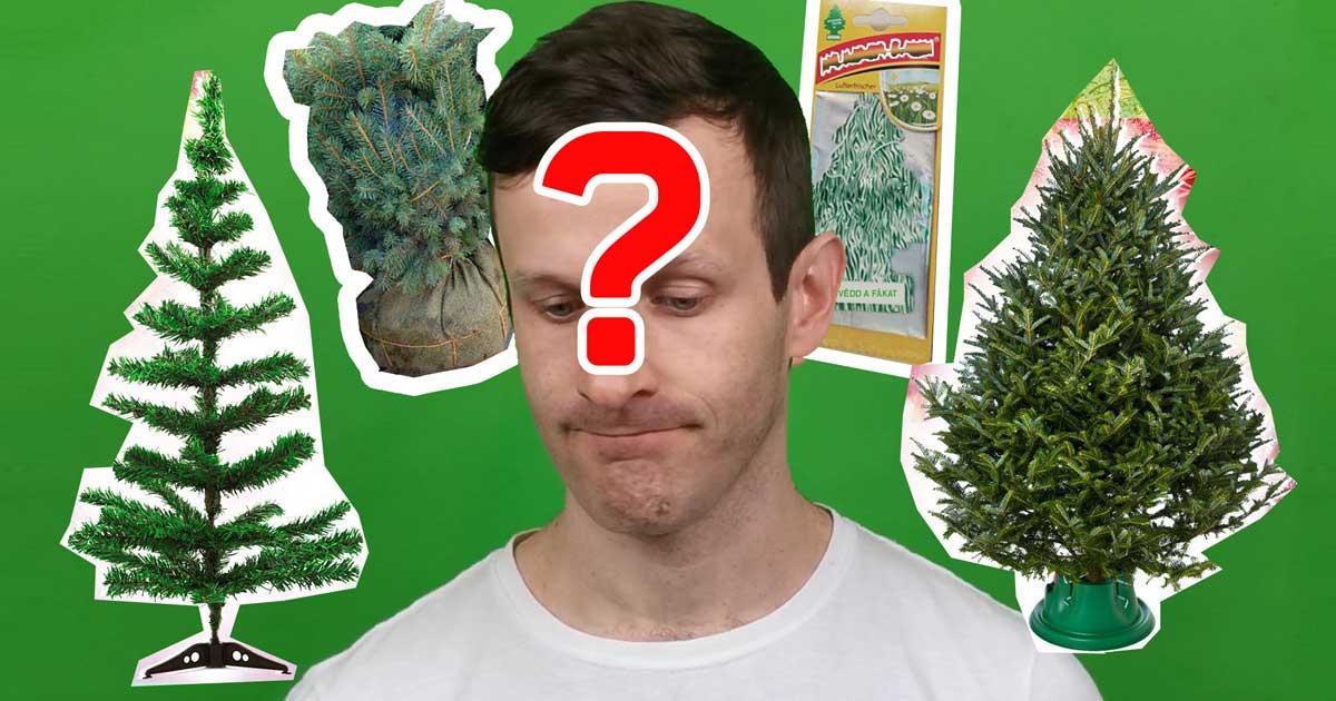 Karácsonyfa dilemma: Milyen fenyőt vegyek?