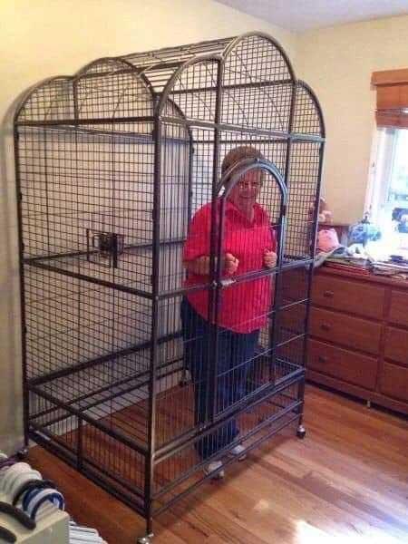 Ha nincs más lehetőség zárd el a felelőtlen nagyszülőket :) / Fotó: internet