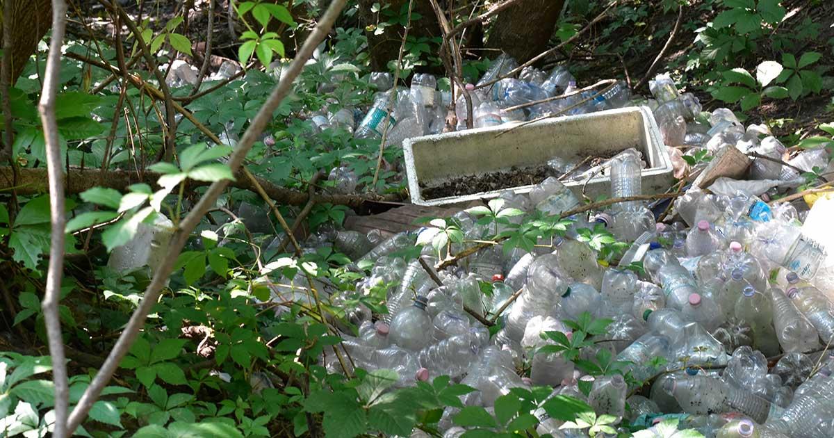 Az újrahasznosítható műanyagok java része eldobva a környezetben végzi. / Fotó: Szebenyi Péter