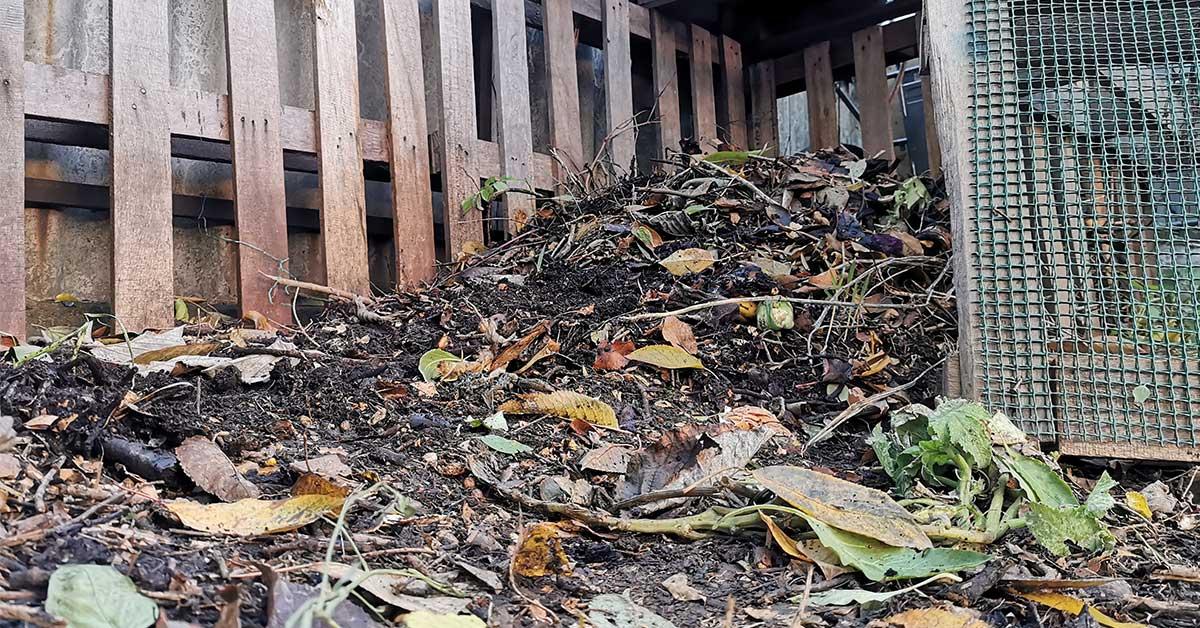 Házi komposztálás nagy előnye, hogy a környezetet is kíméljük vele.