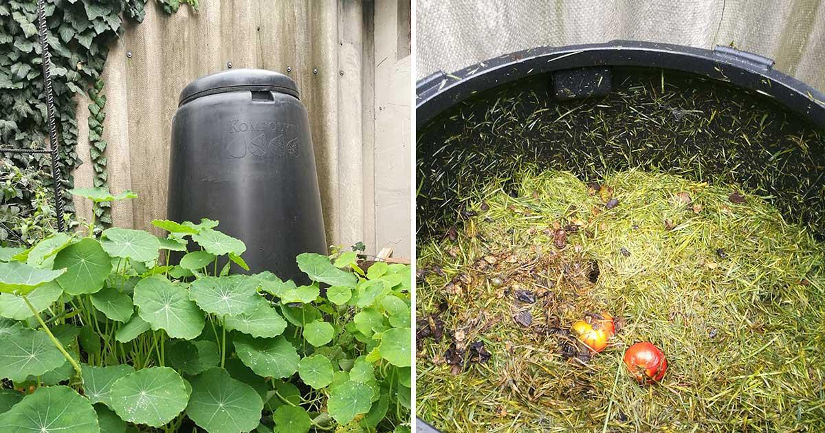 Komposzt tároló teszt: 7 típus, előnyök és hátrányok 1